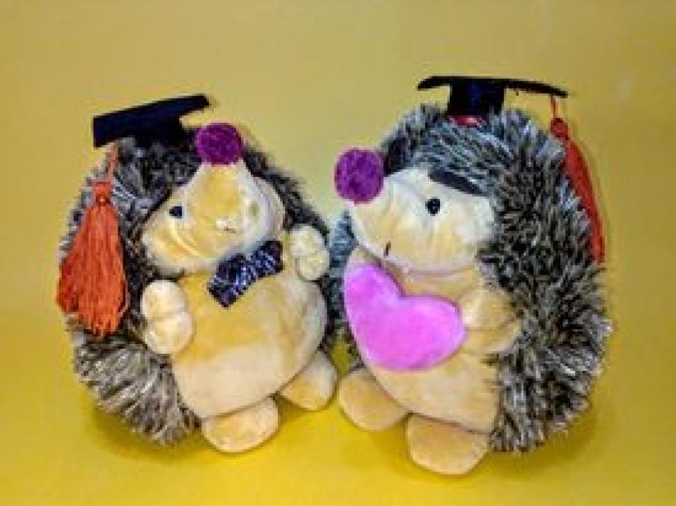 Влюбените дипломанти