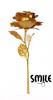 Позлатена роза - златна