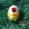 Плъстено яйце калинка - 7 см